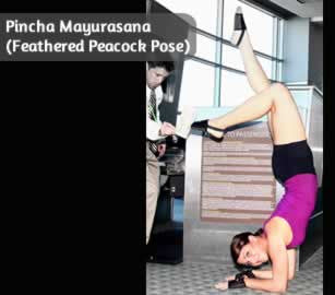 Pincha Mayurasana (Feathered Peacock Pose)