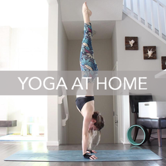 Yoga at Home with YogaPaws