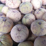 Local Bangkok Cotton Fruit (SANTOL) order price / 2kilos- FREE Bagoong Alamang - Farm2Metro
