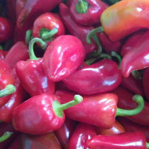 Fresh Organic Red Bell Pepper - order price / 250 grams - Farm2Metro