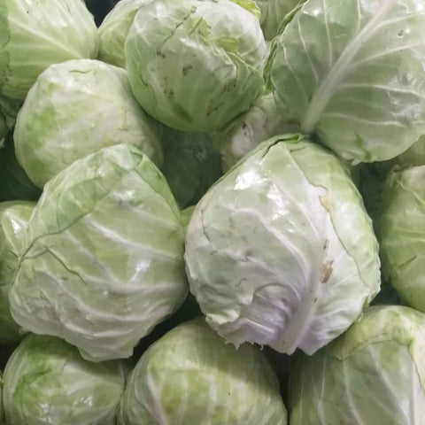 Fresh Local Organic Green Cabbage - order price / kilo - Farm2Metro