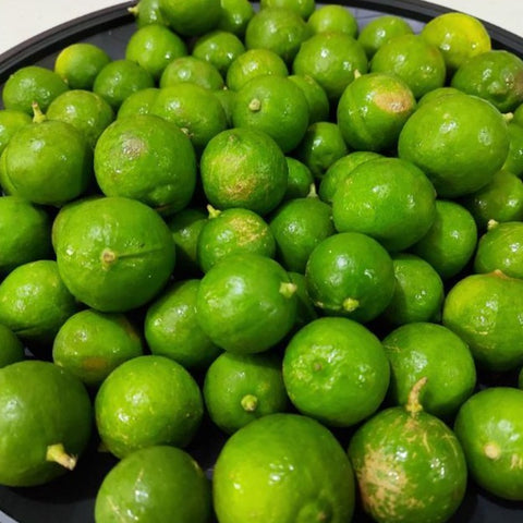 Fresh Local Lime (DAYAP Tagalog) - order price / kilo