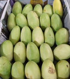 Fresh Pangasinan Green Mangoes Wholesale Price - per box