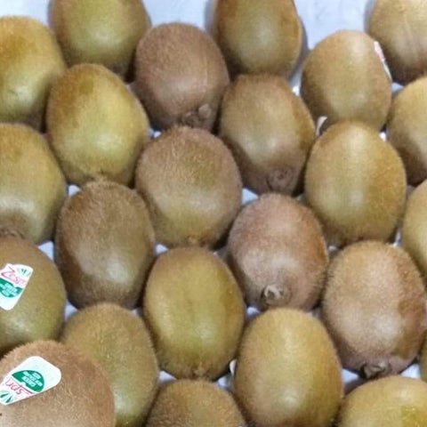 Fresh Kiwi Fruit Green Premium variety- order price / piece