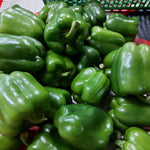 Fresh Organic Green Bell Pepper Large size - order price / 500 grams