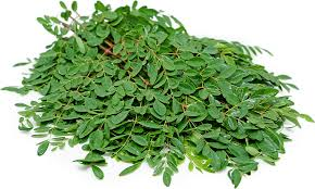 Fresh Malunggay Leaves (order price / 500 grams) - Farm2Metro