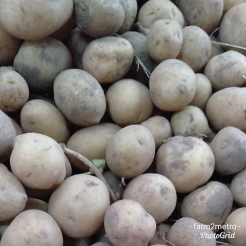 Marble Potato - order price / 500 grams - Farm2Metro