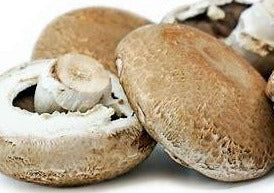 Fresh Portabello Mushroom - order price / 500 grams