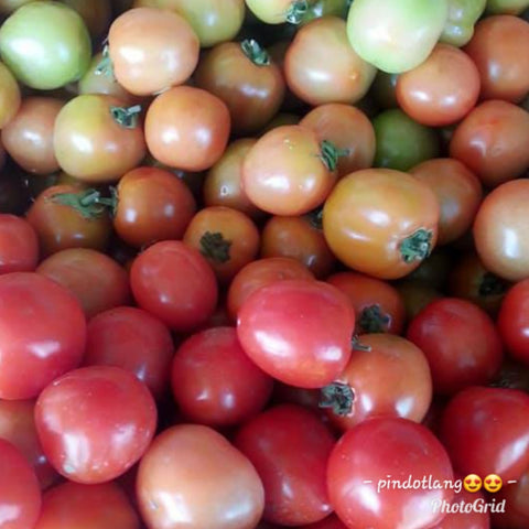 Local Organic Tomatoes - order price / 500 grams - Farm2Metro