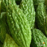 Native Ampalaya (order price/250 grams) - Farm2Metro