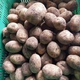 Local Organic Potato - order price / kilo