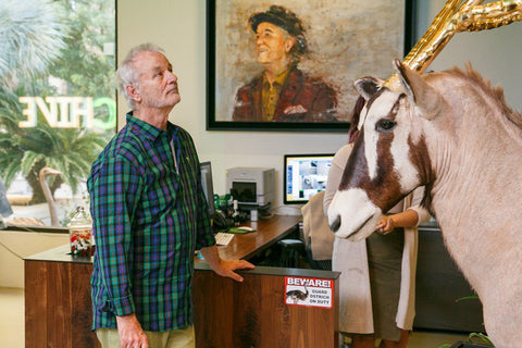 12 Epic Bill Murray Quotes and Why We Love Him - The Chivery