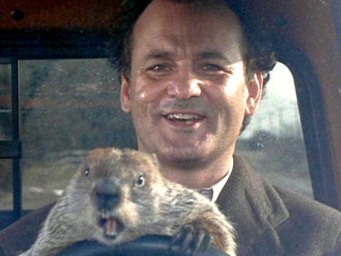 Bill Murray Quotes - Groundhog Day - I Was In The Virgin Islands Once