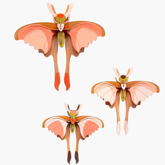 Studio Roof 3D Model Wall Decor - Set of 3 Comet Butterflies