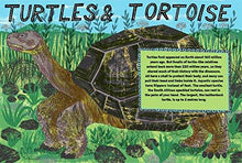 Pocket Guide to Turtles, Snakes and other Reptiles - Children's Book