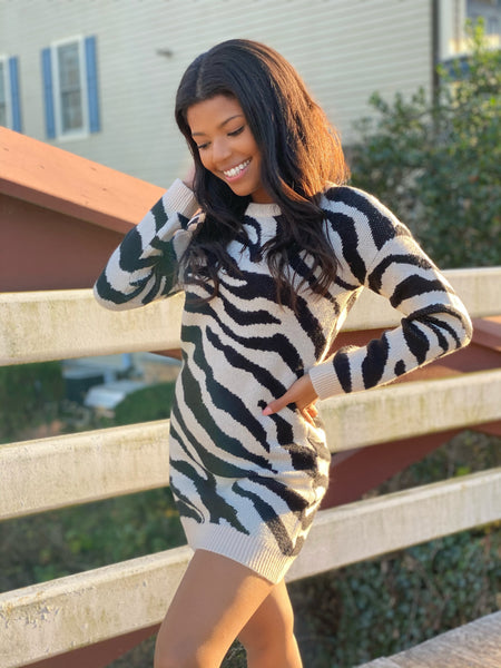 Zebra Sweater Dress