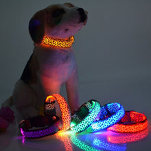 Load image into Gallery viewer, LED Light Up Leopard Collar