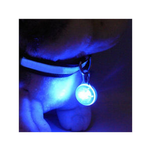 Portable Round Shaped Waterproof LED Pet Puppy Dog Safety Pendant Collar Night Light (Blue)