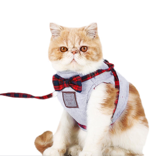 Cat Bowtie Harness and Leash Set