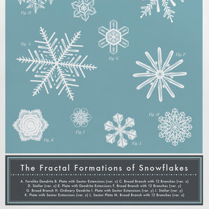 The FRACTAL FORMATIONS of SNOWFLAKES | GRUßKARTE | Pop Chart Lab - Charles & Marie