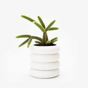 STACKING PLANTER | BLUMENGEFÄSSE | Chen Chen & Kai Williams | Areaware