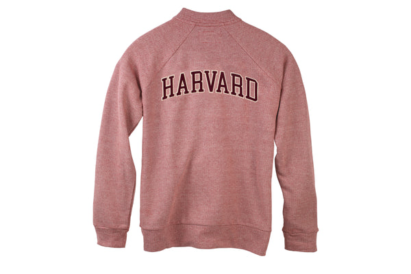 Harvard Striped Bomber