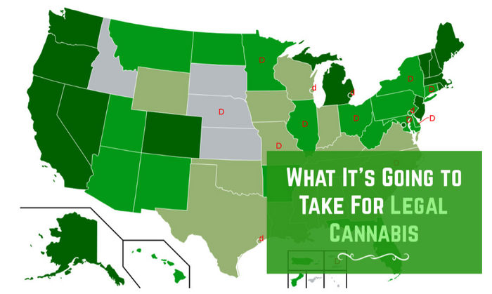 The Future of Cannabis and What It's Going to Take to Legalize It