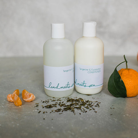 HAIR CARE SET - Tangerine & Eucalyptus