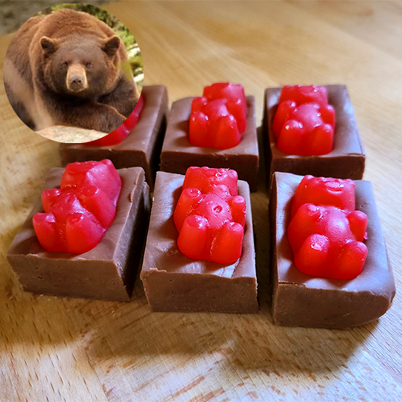 CINNAMON BEAR (Chocolate with Cinnamon Bears) FUDGE