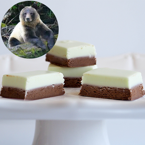GLACIER BEAR (Chocolate Mint) FUDGE