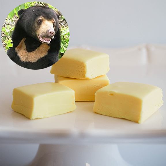 SUN BEAR (Lemon) FUDGE