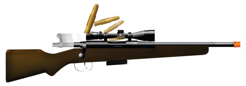 270 Bolt Action Rifle