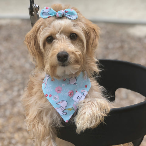 Handmade Bows and Bandanas