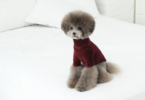 Toto & Roy Velvet Turtleneck