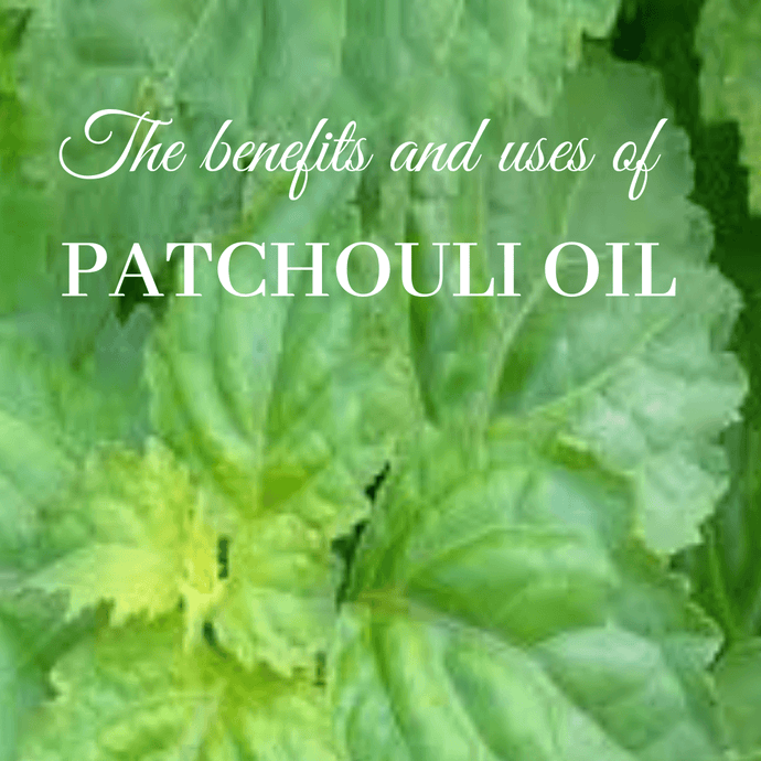 What Benefits Can You Derive From Patchouli Oil?