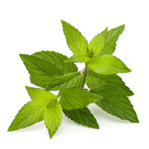Certified organic peppermint oil