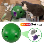 Interactive Motion Cat Toy - DidntKnowINeedThat