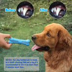 DKINT™ Dog Chew Bone Toy Toothbrush - DidntKnowINeedThat