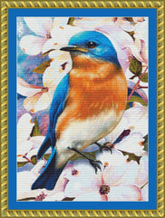 Bluebird in Dogwood