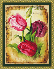 Tulips Seed Packet