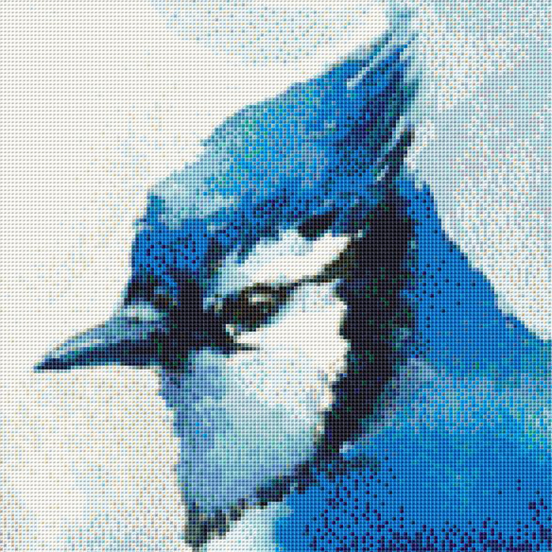 Watercolor Blue Jay PDF PATTERN