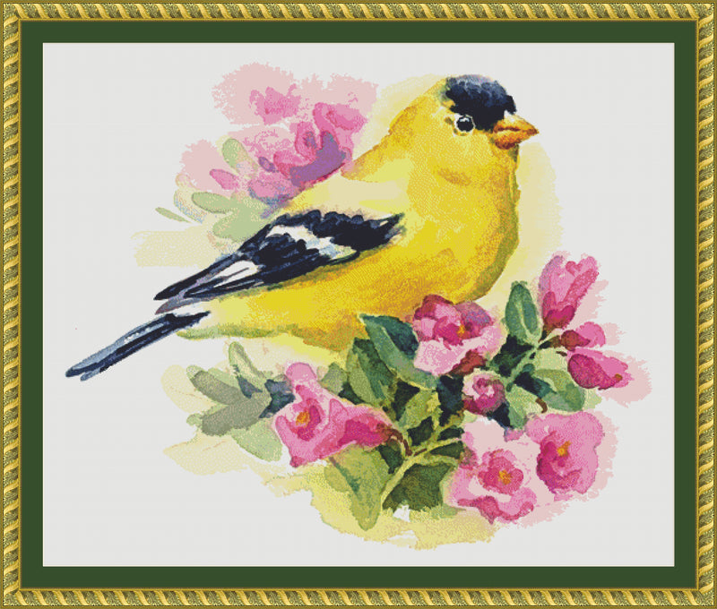 Watercolor Goldfinch