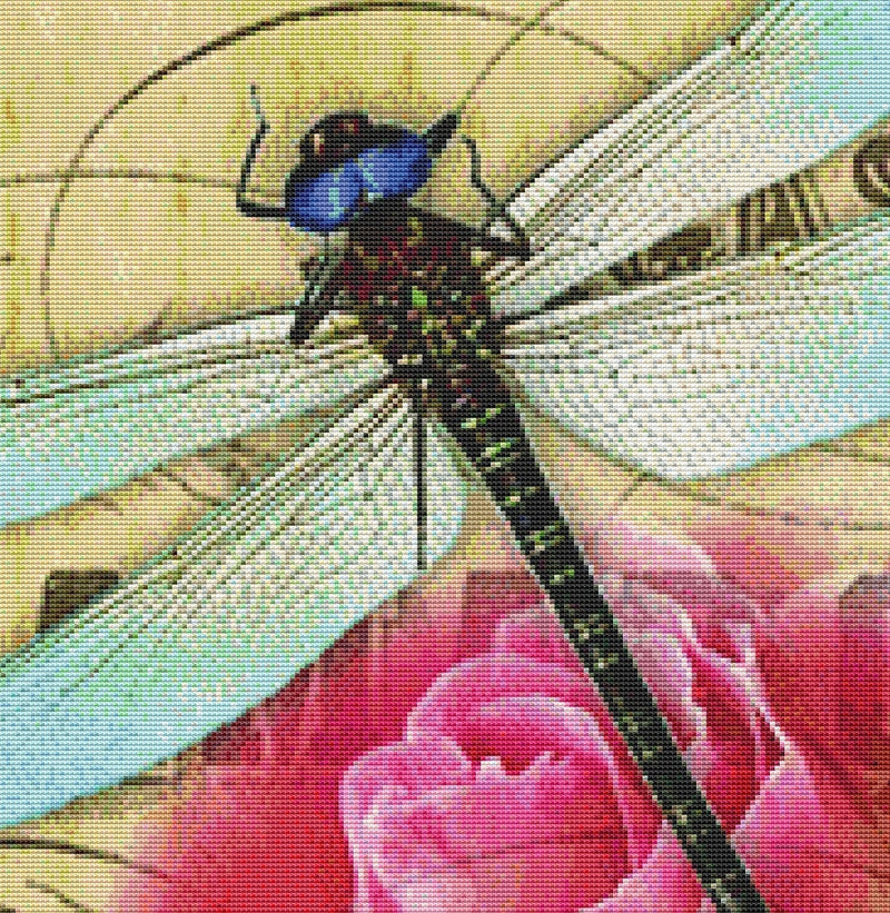 Dragonfly Rose
