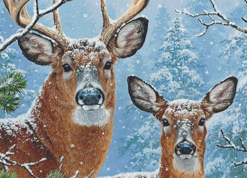 Whitetail Winter (CROP)