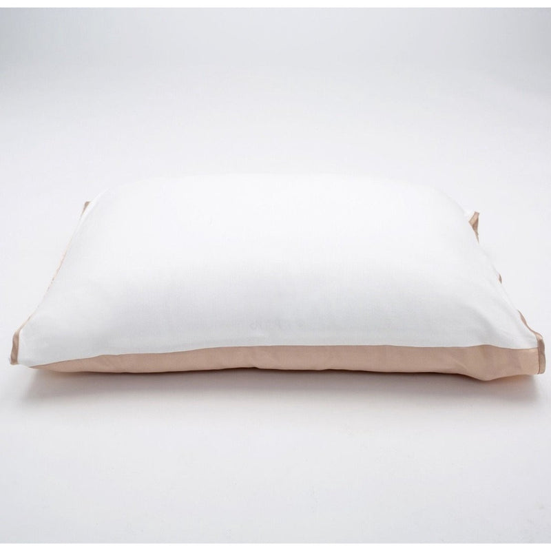 Champagne Silk Pillow Sleeve BUY ONE GET ONE 50% OFF! CODE:PAIRS (must order 2 for this deal)