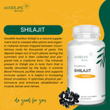 Goodlife Nutrition Shilajit Extract for Healthy Ageing | Endurance | Vitality