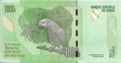 CONGO 1000 Francs 🌎💷 P-101a, UNC; 2005 🌎💷 Two Okapi; Lizards 🦜 PARROT 🦜 - Busy Bee Emporium