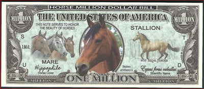 HORSE Fantasy Note 💶🐴  One Million 🐴 HORSES 🐴🐴💶 Animal Series - Busy Bee Emporium