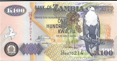ZAMBIA 100 Kwacha 🌎🦅 P- 38d, UNC; 2003 🦅 African Fish Eagle 🐃 WATER BUFFALO - Busy Bee Emporium