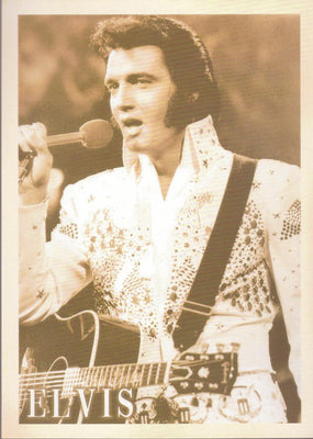 ELVIS: MUSIC ARTIST - Busy Bee Emporium